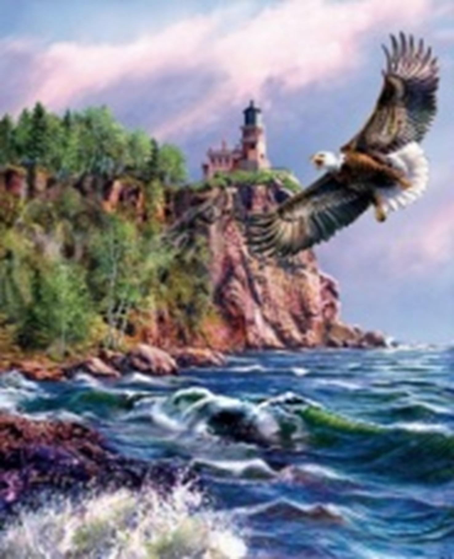 Картина раскраска по номерам 30x40 Парящий орёл (арт ...