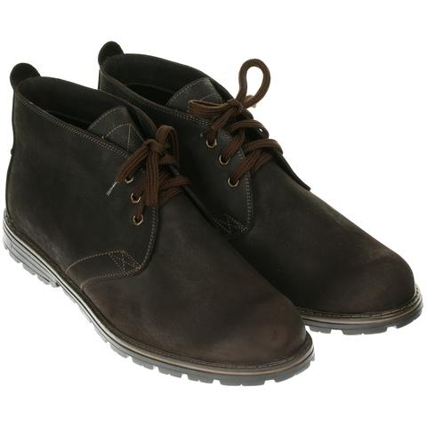 564483 ботинки мужские коричневые байка. КупиРазмер — обувь больших размеров марки Делфино