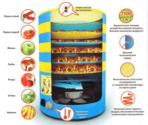 Сушилка для овощей и фруктов СУ-1