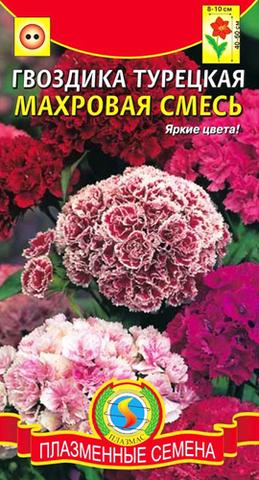 Семена Цветы Гвоздика турецкая Махровая смесь