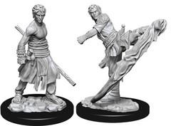 D&D Nolzur's Marvelous Miniatures - Male Half-Elf Monk