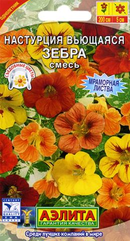 Семена Цветы Настурция Зебра