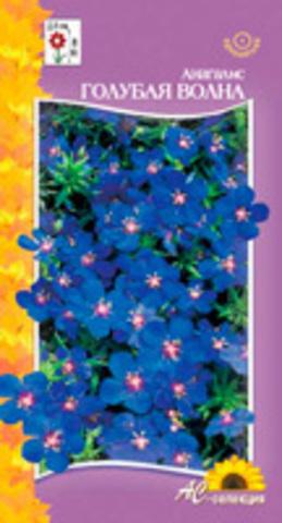 Семена Цветы Анагалис Голубая волна