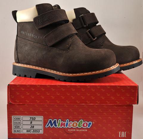 Ботинки утепленные Minicolor  (Mini-shoes)