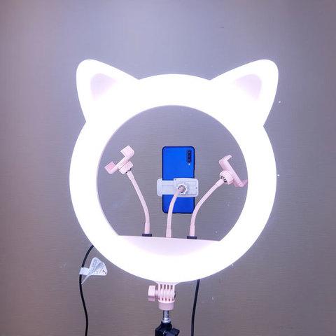 Кольцевая лампа LED RING 408 CAT