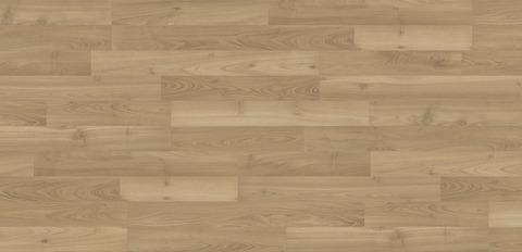 Ламинат Acacia Cornsilk | 35063 | KAINDL