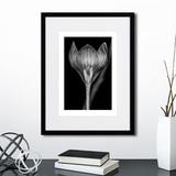 Анна Агостон - Mysterious plants №6
