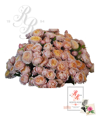 Букет кустовой пионовидной розы Джульетта