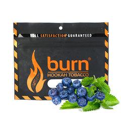 Табак Burn 100 г Акциз Blueberry Mint