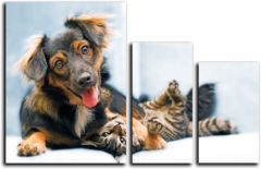 "Модульная картина ""Дружелюбная собака"""