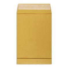Пакеты в упаковке Крафт С4стрип Extrapack 229х324 100г 250шт/уп/6541