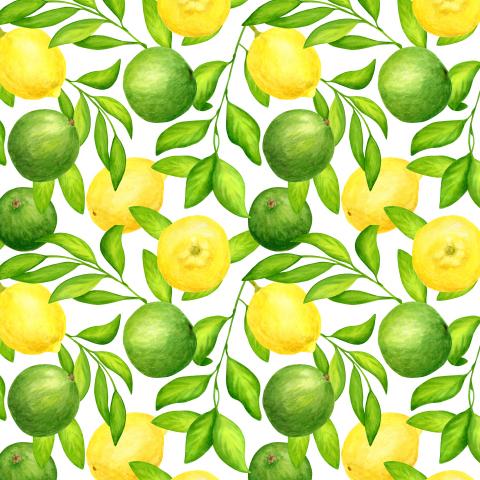 Сочные цитрусы. Акварельные лаймы и лимоны с листьями