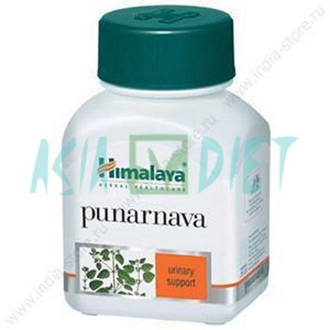 Himalaya Punarnava