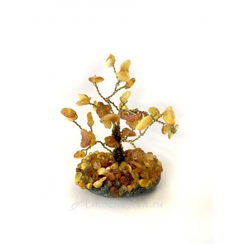 Янтарное дерево среднее