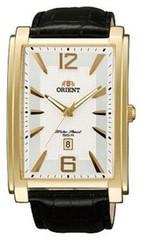 Наручные часы Orient FUNED002W0