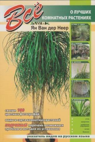 Всё о лучших комнатных растениях