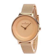 Женские часы Skagen SKW2213