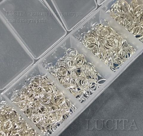 Набор колечек одинарных (примерно 1500 шт) в контейнере (цвет - серебро) 3-8х0,5-1 мм (4)