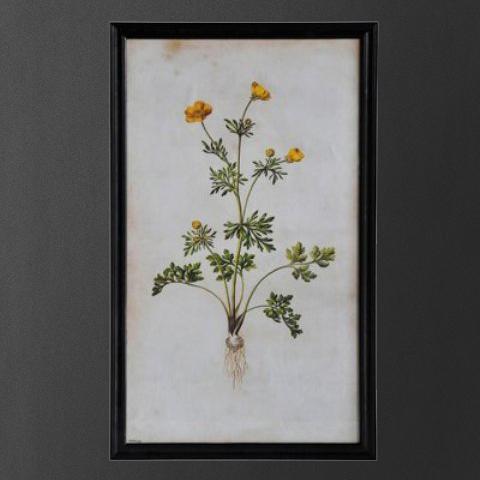 Постер Roomers Желтый цветок на белом