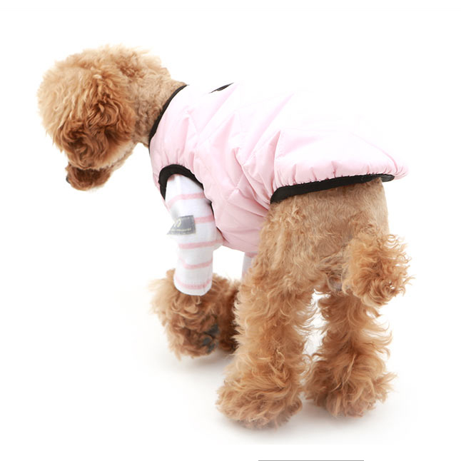 весенние курточки для собак