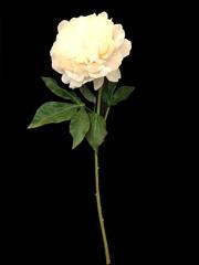 Искусственный цветок 57см Silk-ka пион лососевый