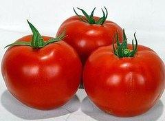 Вольверин F1 семена томата детерм.., (Syng.)