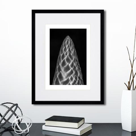 Анна Агостон - Mysterious plants №8