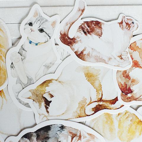 Набор открыток Miao