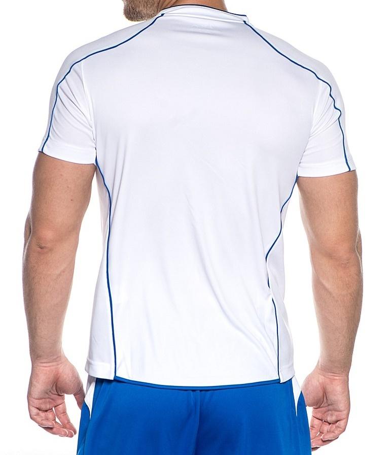 Мужская футболка для волейбола Asics T-shirt Volo (T604Z1 0143) белая фото