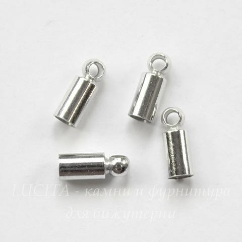 Концевик для шнура 2,3 мм, 8х3 мм (цвет - платина), 4 штуки