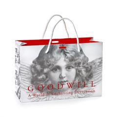 Бумажный подарочный пакет 30x20x12см  Goodwiil Paper Bag