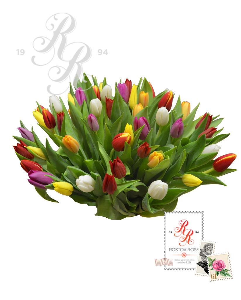 25 Микс из Тюльпанов