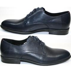 Мужские синие туфли Икос 3360-4.