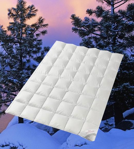 Одеяла Одеяло пуховое теплое 200х220 Kauffmann Legend 650 odeyalo-puhovoe-teploe-200h220-kauffmann-legend-650-avstriya.png