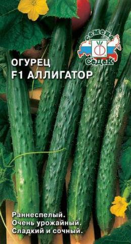 Семена Огурец Аллигатор F1 СеДеК
