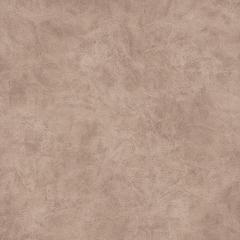 Велюр Camel beige (Кемел бейж) 2