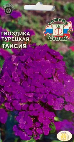 Семена Цветы Гвоздика турецкая Таисия