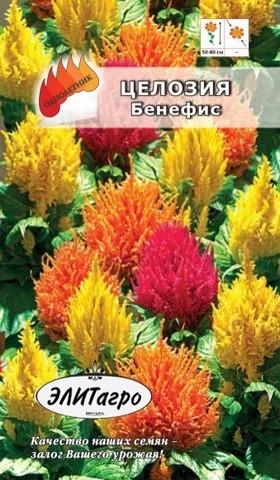 Семена Цветы Целозия Бенефис перистая