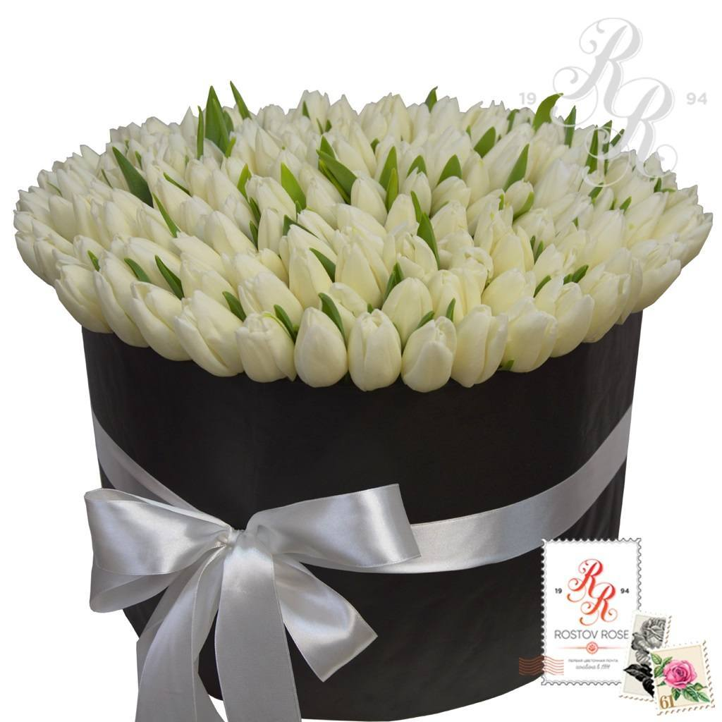 201 Тюльпан в коробке