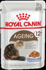 Royal Canin Ageing +12 влажный корм В ЖЕЛЕ для пожилых кошек старше 12 лет с первыми признаками старения
