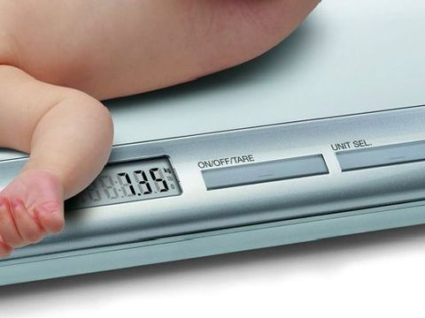 Весы для новорожденных Laica PS3001 напрокат