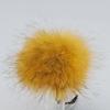 Жёлтый енот