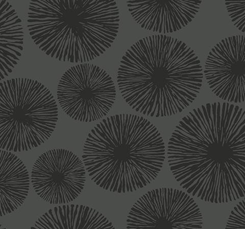 Обои Wallquest Black & White BW22511, интернет магазин Волео