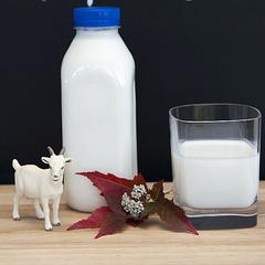 Кефир термостатный из козьего молока 0,5 л