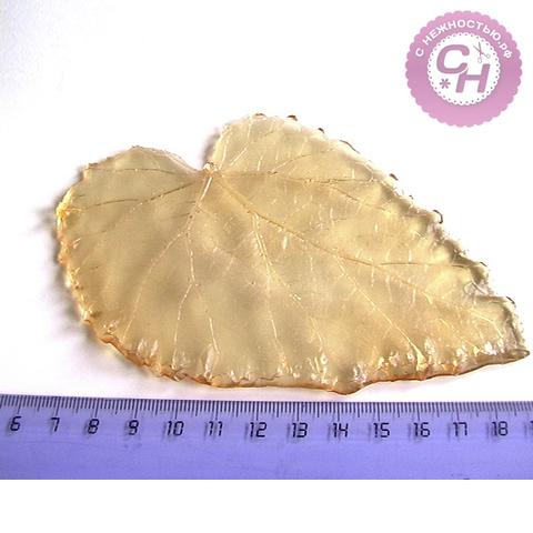 Молд лист мать-и-мачеха, 12 см.