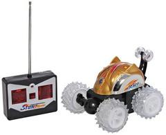 Машинка на пульте управления Stunt Show Racer
