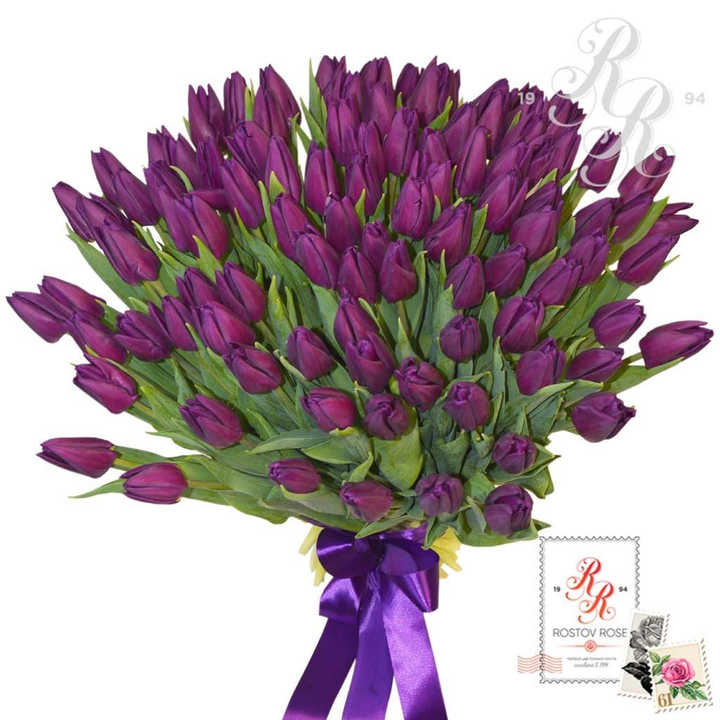 51 Фиолетовый Тюльпан