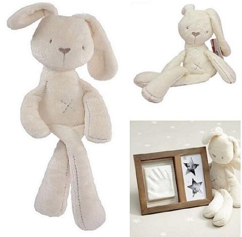 Rabbit Bunny 14