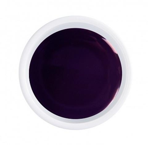 ARTEX artygel Тёмная слива 012 5 гр. 07251012
