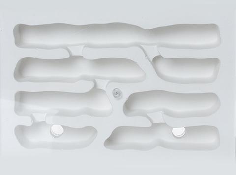 "Комплект формикарий ""Белый Дом 3.0"" и муравьи Pheidole"